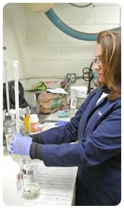 laboratory-testing-metal-plating